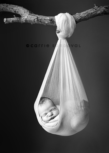 Baby Photography Ideas on Where Do You Get The Ideas For Your Props  Did You Test Drive Them On